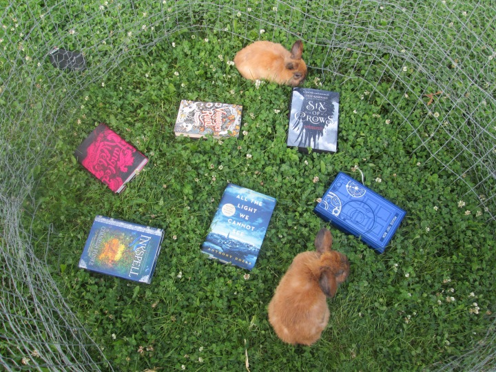 Bunnies & Books // The Best Combination since English Actors and RabidFangirls